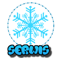 płatek śniegu z napisem serwis